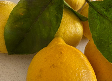 Limones encurtidos